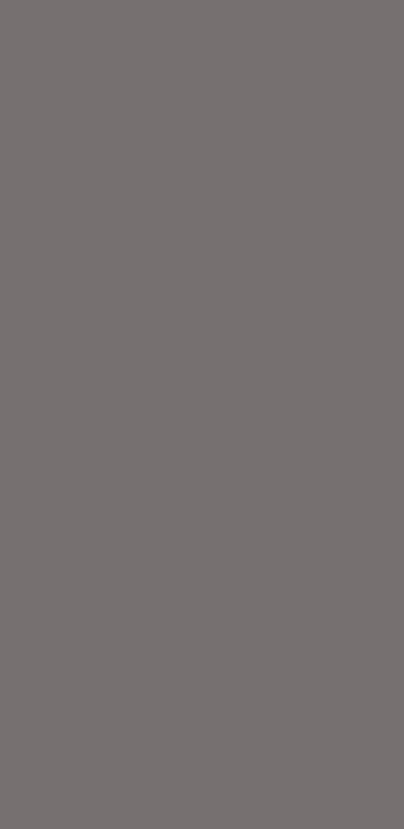 摩登纯色 AC918355G